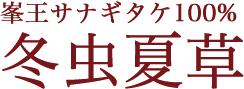 峯王サナギダケ1005 冬虫夏草