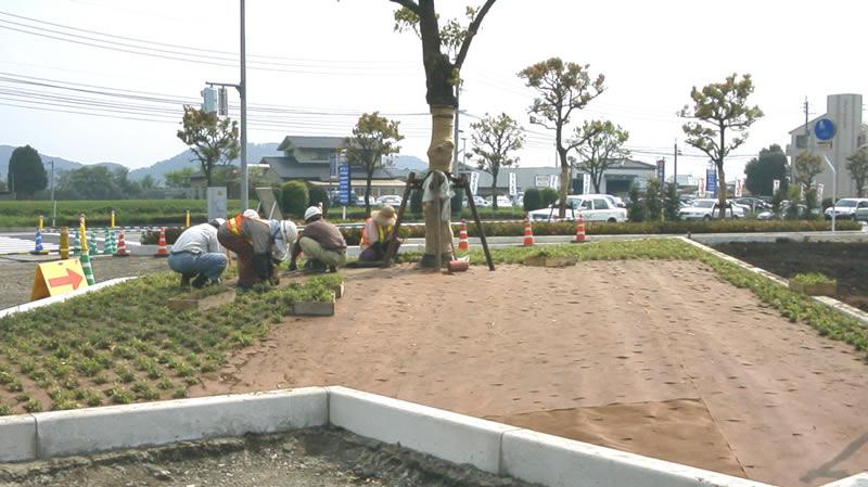 麻生田里木線植え付け