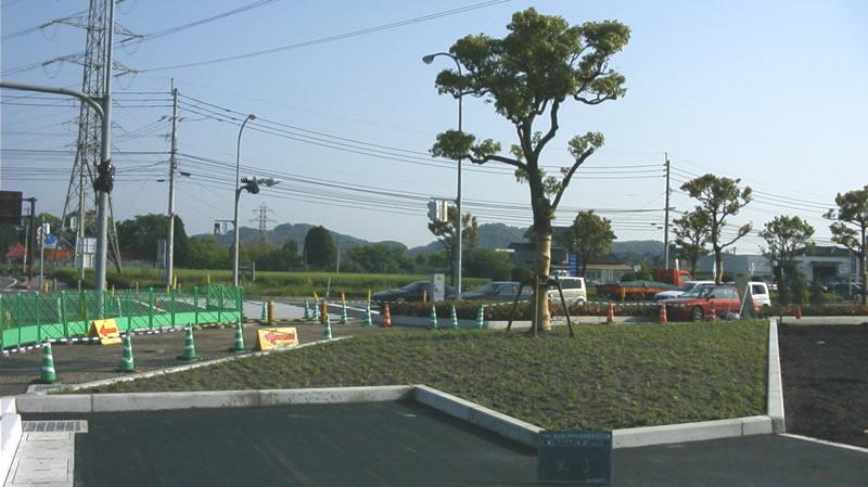 施工後 麻生田三里木線植え付け
